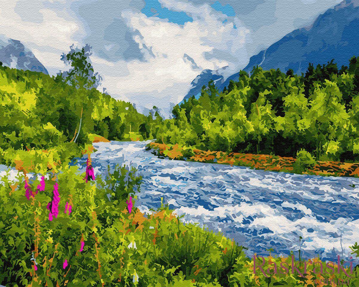 Раскраска по цифрам Бурная река (BRM27397) Rainbow Art ...