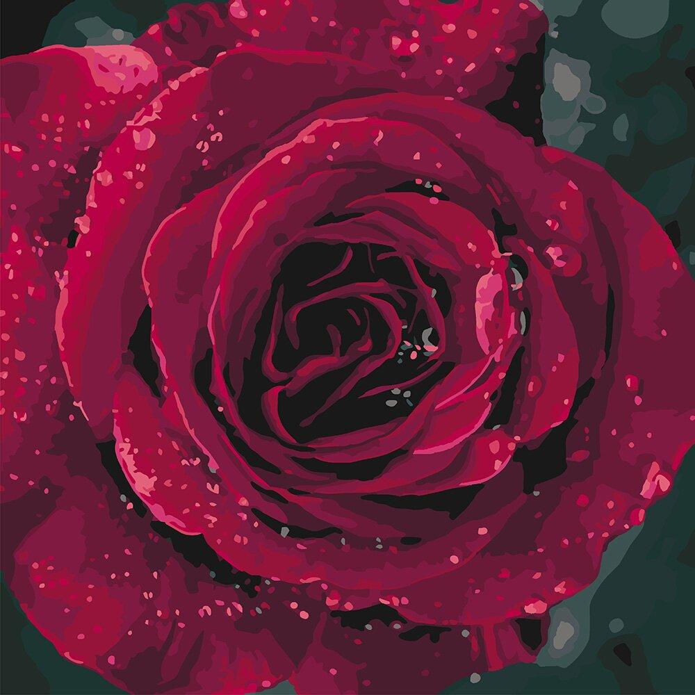 Раскраска по номерам Алая роза (KH3038) Идейка купить в ...